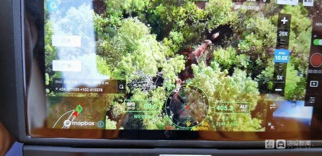 云南北迁象群持续在昆明双河乡活动,当地储备象食15吨,投喂3.6吨 全球新闻风头榜 第5张