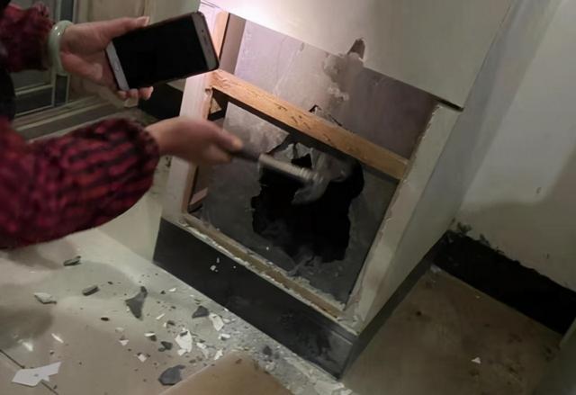 狸花貓被困37天,奇跡生還,被救時只有2斤,它是怎麼活下來的 家有萌寵 第5张