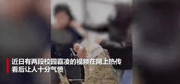 河北6名学生围殴1女生 警方已立案 参与者将会承担什么责任? 全球新闻风头榜 第1张