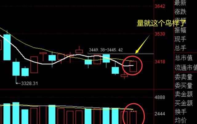 玻璃瓶子都蹭热点了,表明组织没怂了,大资产逐渐买市场股票了!