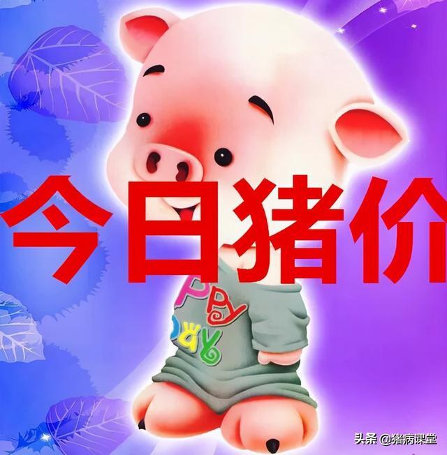 2021年3月19日生猪价格行情