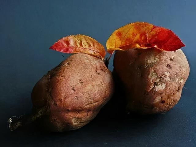 地瓜的吃法,红薯别光煮着吃,3种新吃法,别有一番滋味!四个注意事项需牢记