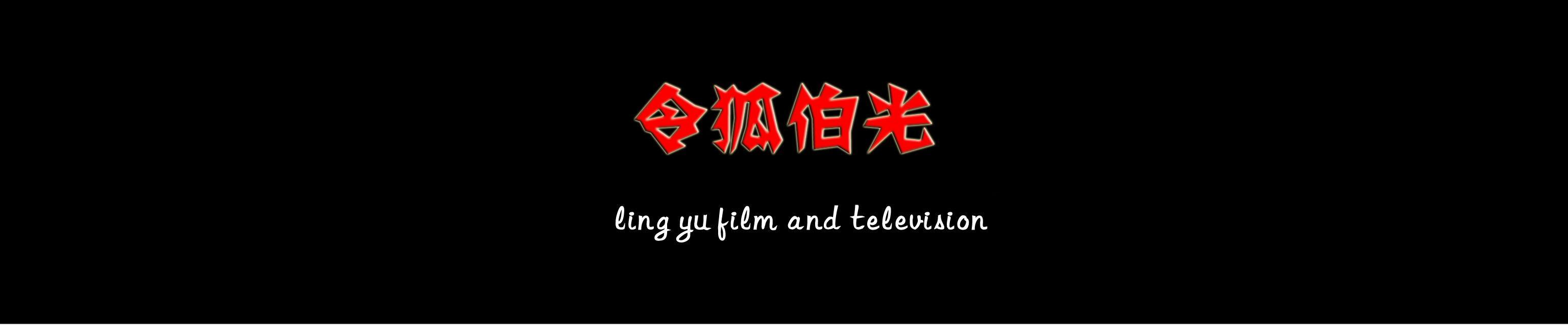 《濒海交锋》的电影导演精英团队,刘德华出演的《反贪风暴》系列