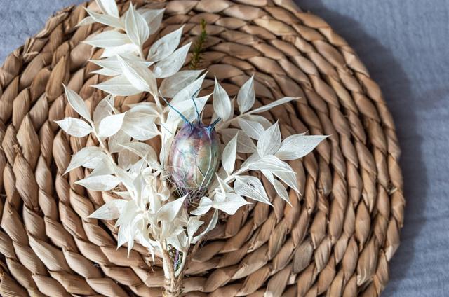 怎么做干花,快死的鲜花别急着扔,绳子一绑倒挂起来,两周变成文艺干花