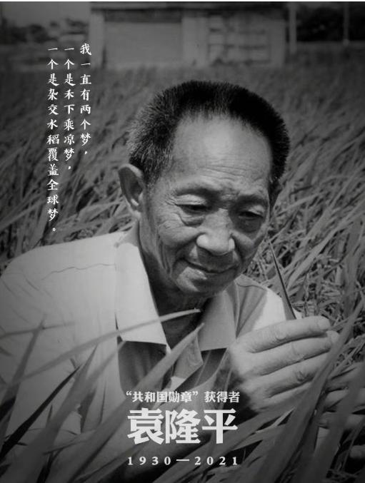 名人的母亲,袁隆平:母亲的教育影响了我的一生!每个伟人背后,都有个好妈妈