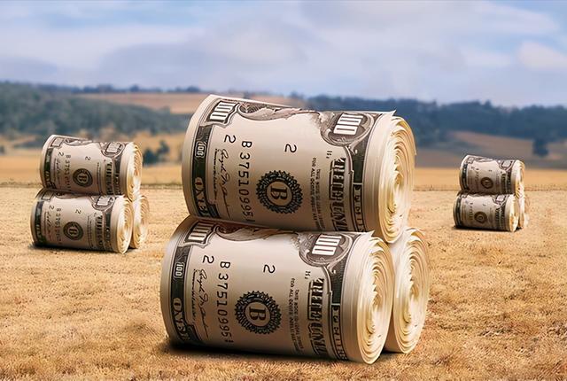 当国际性食品类涨价的情况下,是否也就代表着大家的粮价也会提高