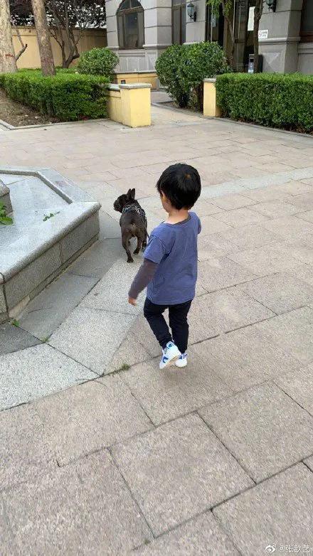 袁弘对张歆艺说你的大腿我来抱这两人的爱情也太甜了吧 全球新闻风头榜 第4张