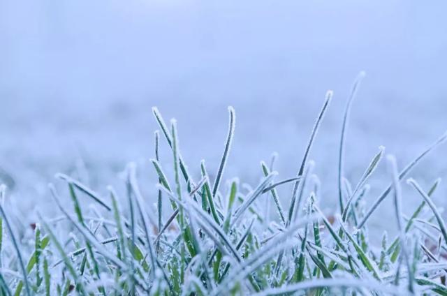 温暖的诗,8首诗词,写尽冬日之美:岁月寒凉,因你温暖