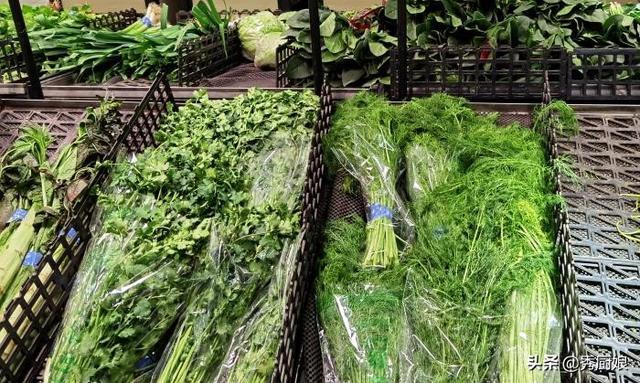 小茴香的吃法,天冷了,我家最常吃茴香,比萝卜营养,比白菜鲜,女性常吃好处多