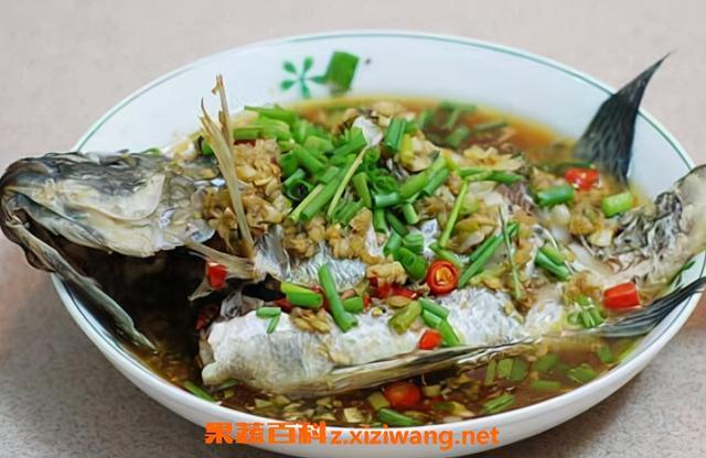 罗非鱼怎么做,东盛澜丨罗非鱼怎么做好吃 罗非鱼的做法大全