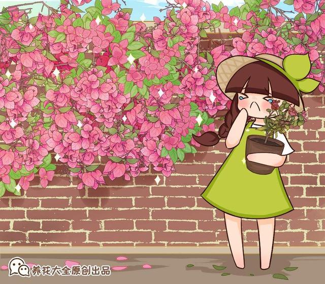 图片大全花卉,5种花越养越上瘾,只要养好一盆,就会特别喜欢