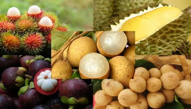 2020年泰国水果和农业产品出入口我国还大有可为