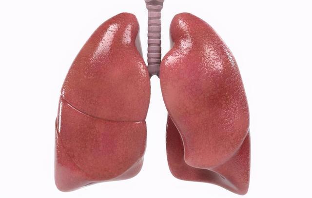 肺病有哪些,肺不好的人,身体往往会有这6种表现!你的肺还好吗?