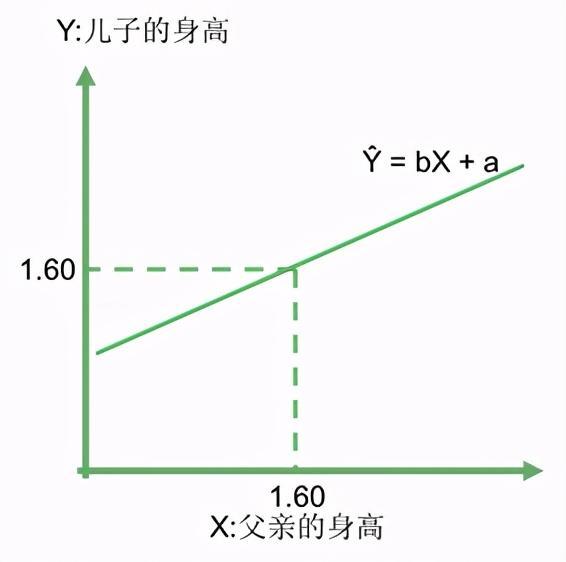 平均数的意义,统计起源 第三讲:向平均回归——集中与平均数