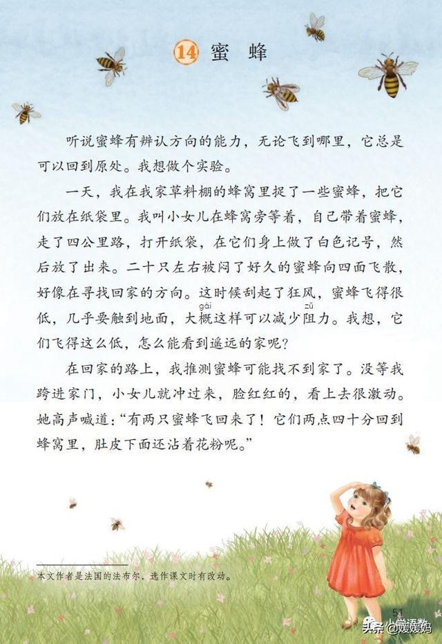 三年级语文下册,三年级下册语文第14课《蜜蜂》图文详解及同步练习