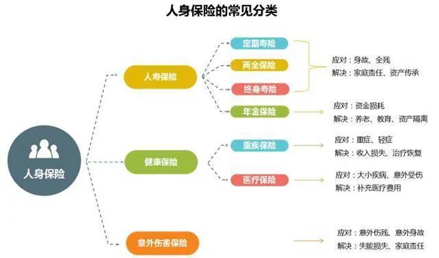 保险品种,保险险种分类、定义、组合