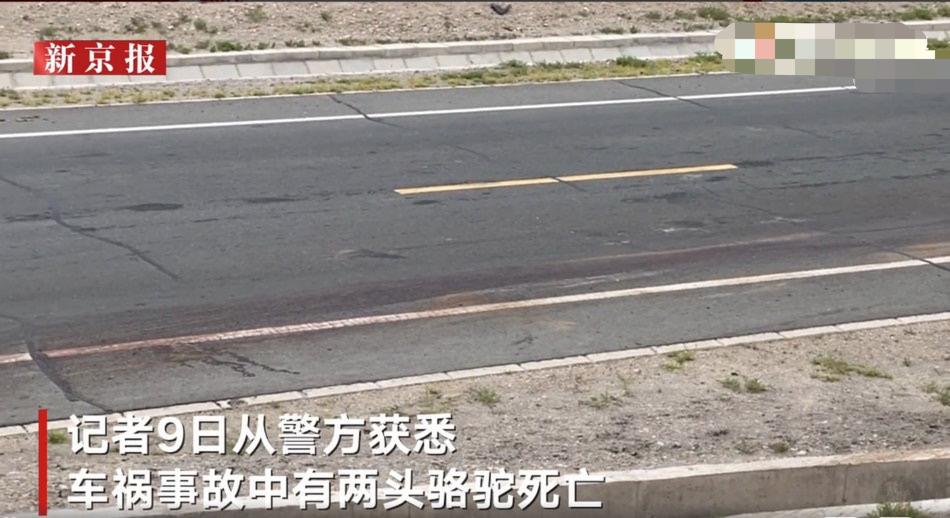 实地探访于月仙车祸现场 事故第二天,路上长长的刹车痕迹依然清晰