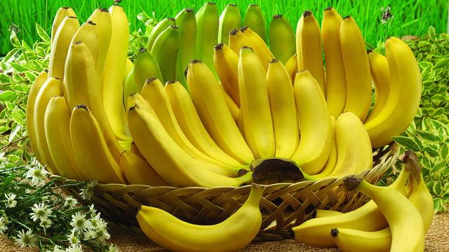 这些花你认识吗?它们可是我们常吃的水果蔬菜。香蕉的花尤其的美