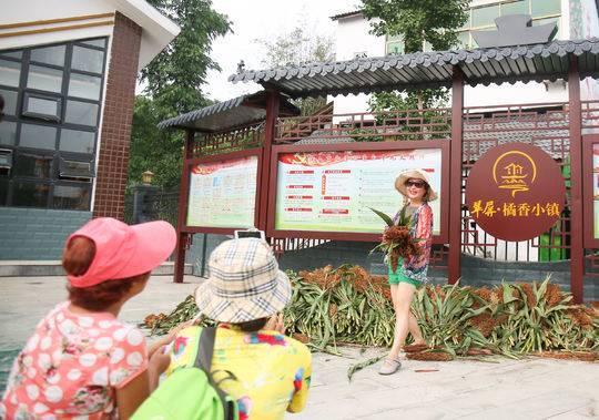 qq三国龙腾虎跃:高粱红了,乡村美了 宜宾市翠屏区第六届高粱文化旅游节开幕了