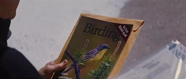 第一次想狂赞这部爆冷片,倾家荡产,差点送命,只为望个鸟?