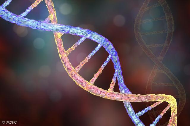 胚胎染色体异常怎么治?治疗困难,疗效并不明显
