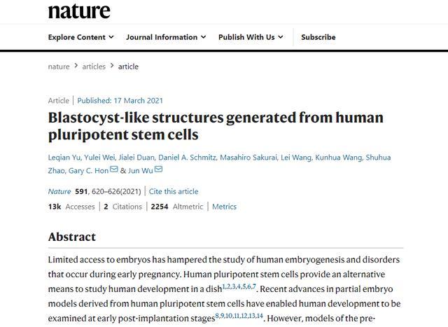 全球最完整人类胚胎模型诞生,将给发育生物学带来变革