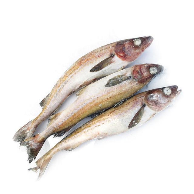 《痛風病,能吃肉,吃魚的真實的小妙招》
