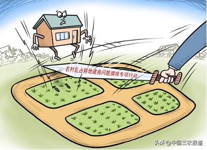 一文读懂!新修订的《土地管理法实走条例》亮点都在这儿