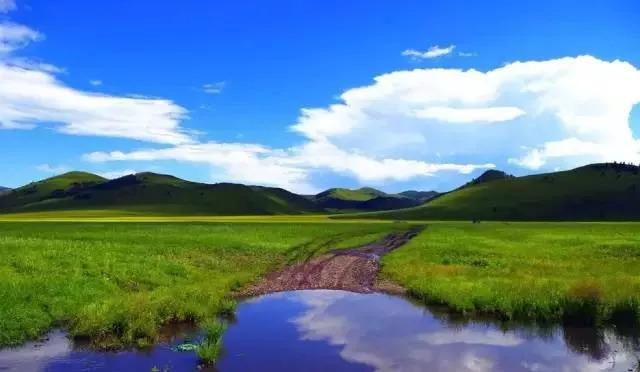 我国内蒙古草原属于:内蒙古有九大草原,你去过几个?