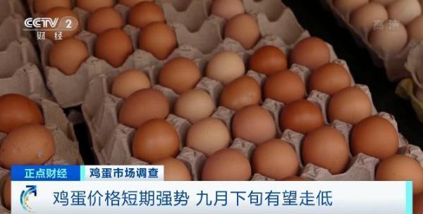 """不""""蛋""""定了!1斤涨1元,几乎天天涨,还会不息涨吗?"""