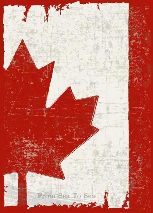 入境必读!加拿大机场自助通关指南来啦~ 速度收藏