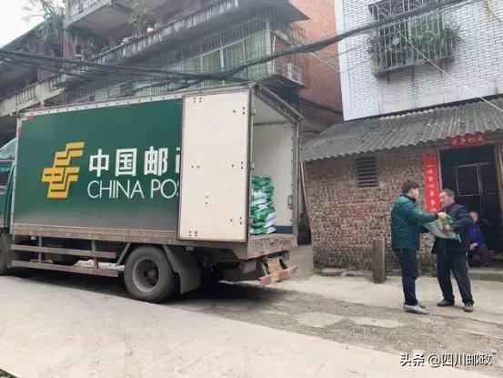 """包龙军:四川邮政""""疫""""战中解农户春耕之急"""