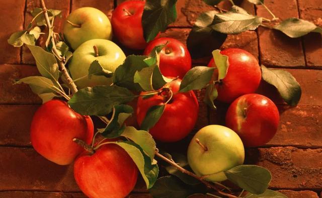 蘋果提神堪比咖啡、巧克力可能有毒?這些食物冷知識你知道嗎