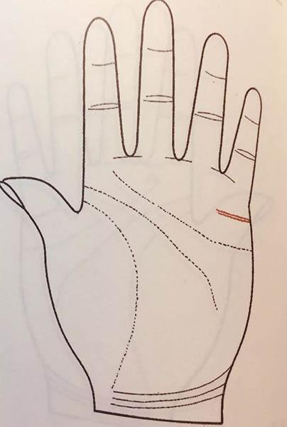 手掌解析运势图婚姻(手掌纹路运势解析)-第7张图片-天下生肖网