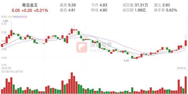 「资金流向」青岛金王上涨5.21%,三日主力净流出279.24万元
