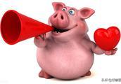 好兽医动保 | 明天(10月25日)全国最新猪价!猪价继续上涨