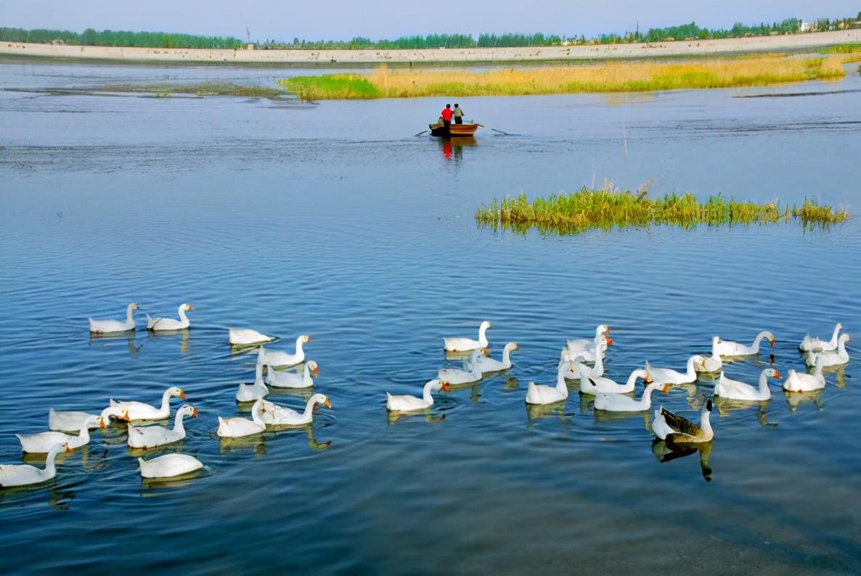 衡水健康养生休闲农业文化两日游