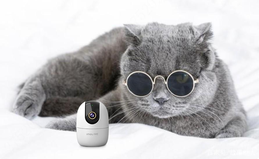 2021年智能摄像头推荐,家用摄像头怎么选?家用摄像头哪个好?