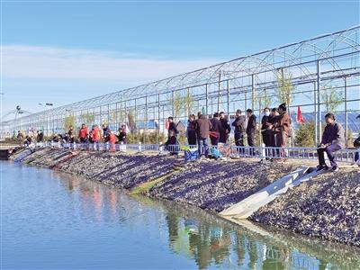 那吉屯农牧场:创新立体种养 打造生态田园
