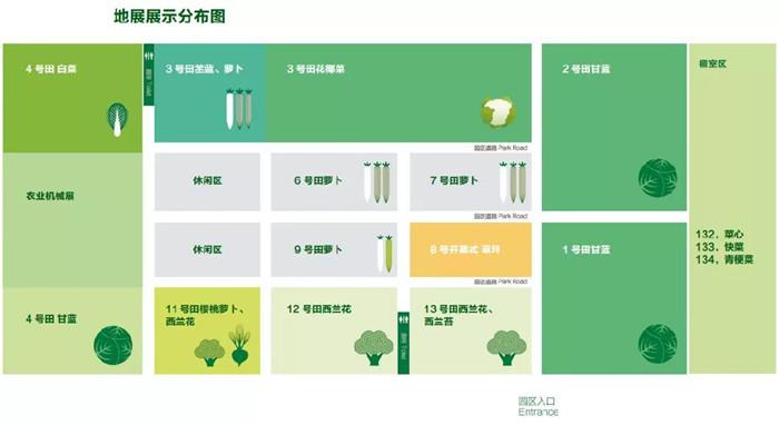 倒计时3天!第三届邢台国际十字花科蔬菜产业大会最全攻略