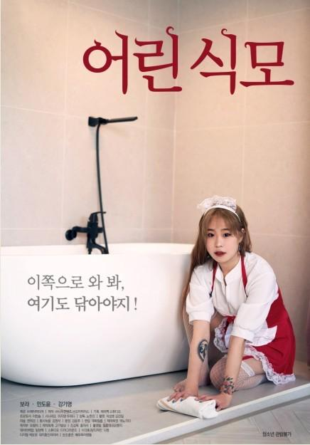 年轻的女仆海报